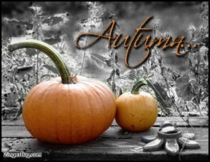 Happy First Day of Fall! Lets Celebrate with some of my Favorite Fall ...