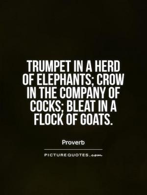 Elephant Herd Quotes