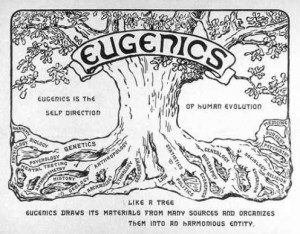 Eugenics is the self-direction of human evolution