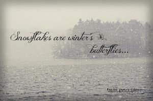 Winter butterflies...!