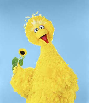 Big Bird Quotes and Sound Clips