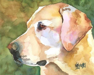 Yellow Lab watercolor