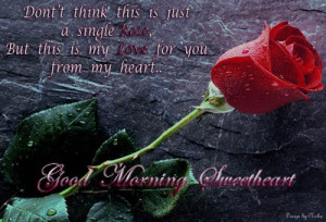 Good morning red rose wallpaper ! Awesome good morning quotes ! Good ...
