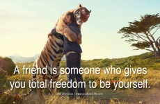 More Inspirational Quotes | Life Quotes | Motivational Quotes
