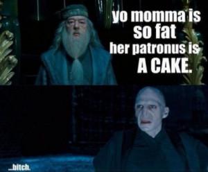 bitch, dumbledor, funny, harry potter, quotes, voldemort