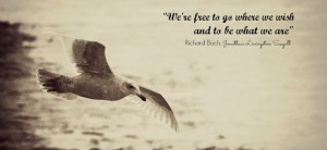 Jonathan Livingston Seagull's quote Seagull Quotes, Quotes Sayings