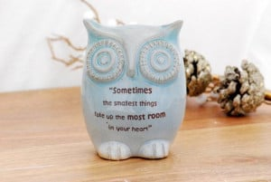Winnie the pooh quote on owl in baby blue baby by claylicious, $32.00