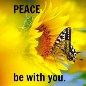 Peace be with you! !
