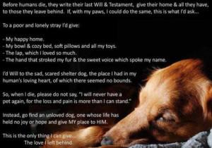 Pet Loss - Index