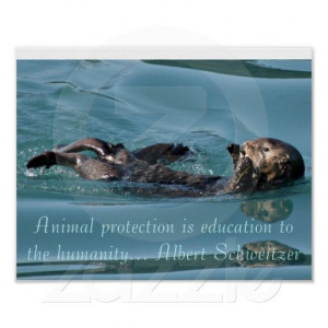 Sea otter Reflection with Famous quote poster $9.95