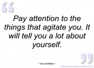 pay attention to the things that agitate terry mcmillan