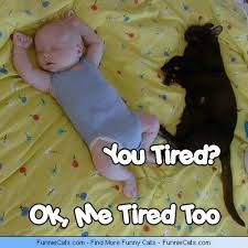 Funny Tired Quotes
