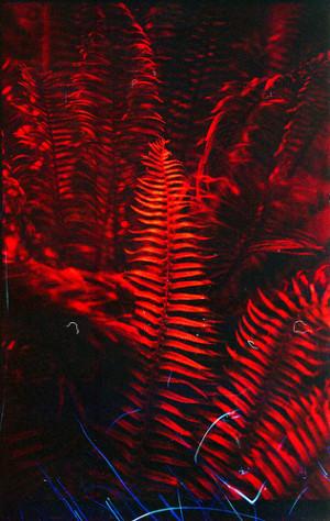 Red Fern Leaf Clip Art