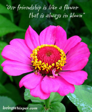 """... Friendship Is Like a Flower That Is Always In Bloom"""" ~ Flowers Quote"""
