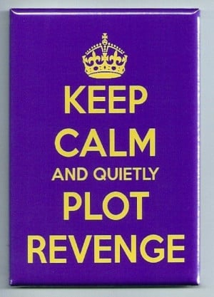 Keep Calm And Quietly Plot Revenge