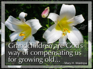 Grandchildren are God's way of compensating us…