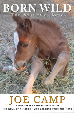 Born Wild – The Soul of a Horse – Personally Inscribed