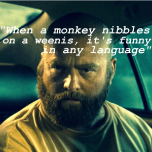Zach Galifianakis Movie Quotes