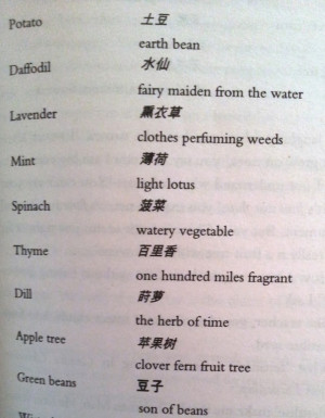 ... for in english or that have an interesting translation in chinese