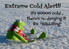 It's so cold ?