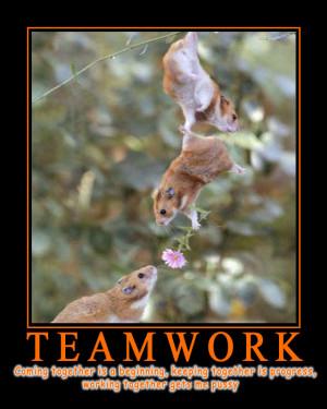 teamwork quotes funny. funny teamwork quotes. funny