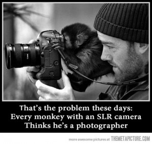 Funny photos funny monkey taking picture camera