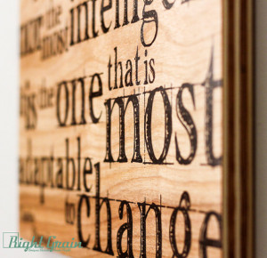 Inspirational Darwin Wall Quote Print on Wood Grain Panels ...