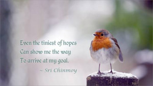Even the tiniest of hopes can show me the way to arrive at my goal