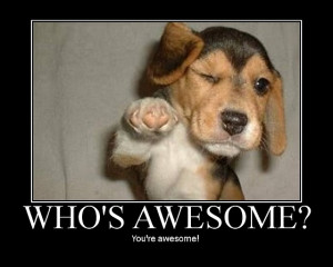 You're awesome !