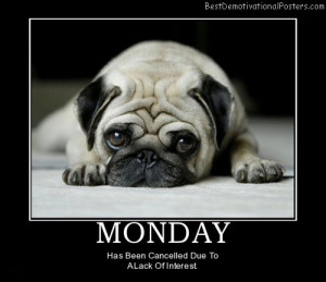 monday-cute-dog-best-demotivational-posters
