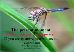 ... Joy and Happiness.If You are Attentive,You Will See It ~ Joy Quote