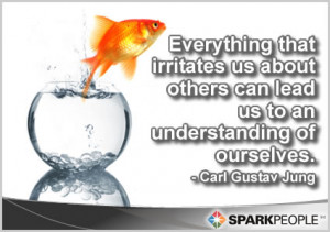 Quote - Everything that irritates us about others can lead ...