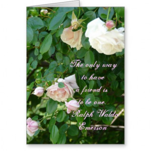 Pink Roses-Friendship Quote Cards