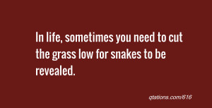 quote of the day: In life, sometimes you need to cut the grass low for ...