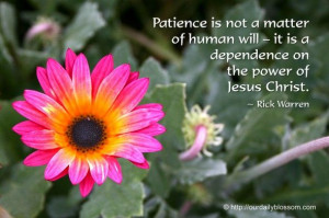 ... – it is a dependence on the power of Jesus Christ. ~ Rick Warren