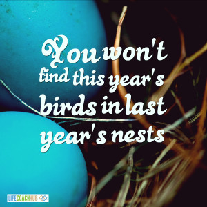 You Won't Find This Year's Birds In Last Year's Nests