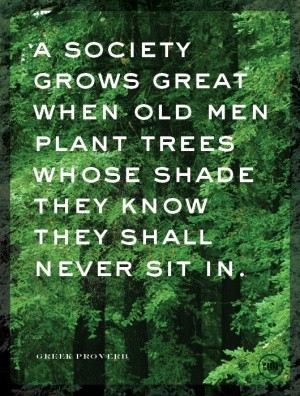 Appropriate for our situation! However, no planting today.....too ...
