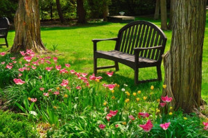 The most ROMANTIC GARDENS – PHOTOS & QUOTES