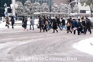 ... icy; nagoya; aichi; meieki; snowfall; travel; destination; slush