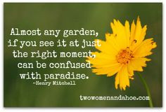 Garden Humor, Quotes & Poems