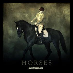 Horse Art Graphics