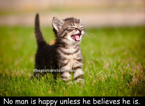 Cute Quotes About Life Kitten