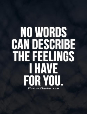 No words can describe the feelings I have for you. Picture Quote #1