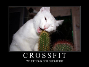 funny crossfit quotes - Google Search