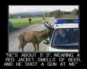 Deer reporting illegal hunter. LOL