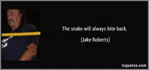Rattlesnake Snake Bite