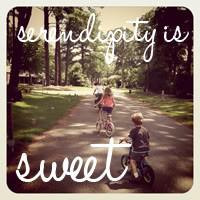 href serendipityissweet com target _blank img alt serendipity is sweet ...