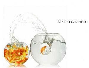 Take_A_Chance.PNG
