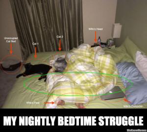my nightly bedtime struggle