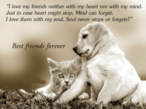 ... can forget. I love them with my soul. Soul never stops or forgets